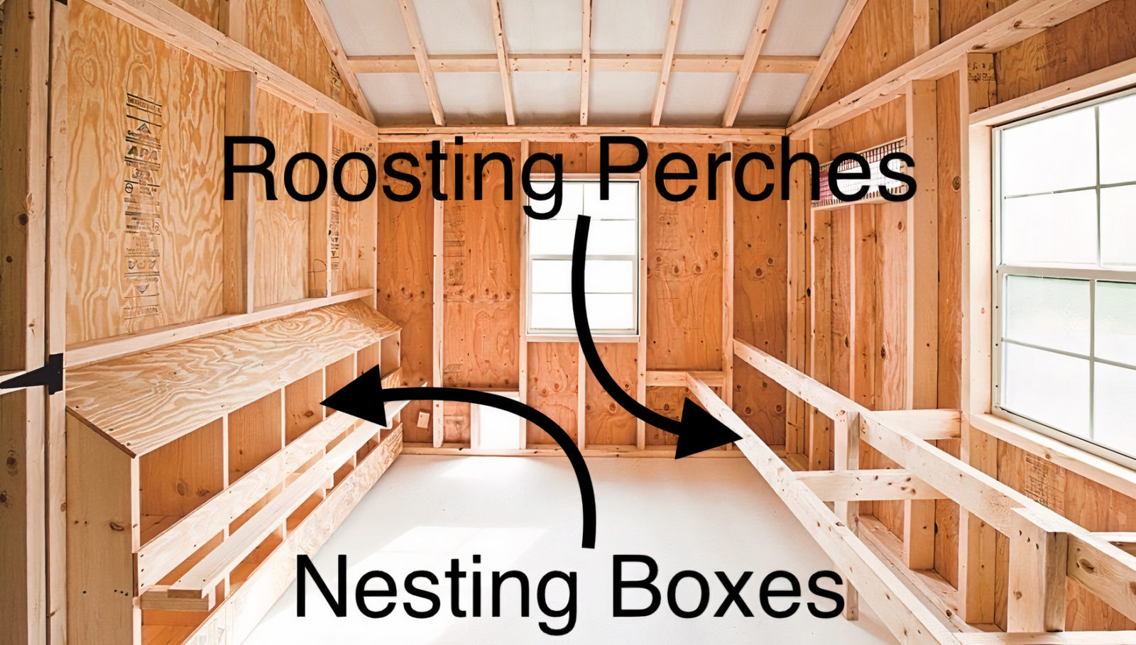 10x12 chicken coop nesting boxes and perch