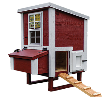 small chicken coop for four hens