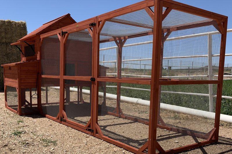 chicken coop for hens